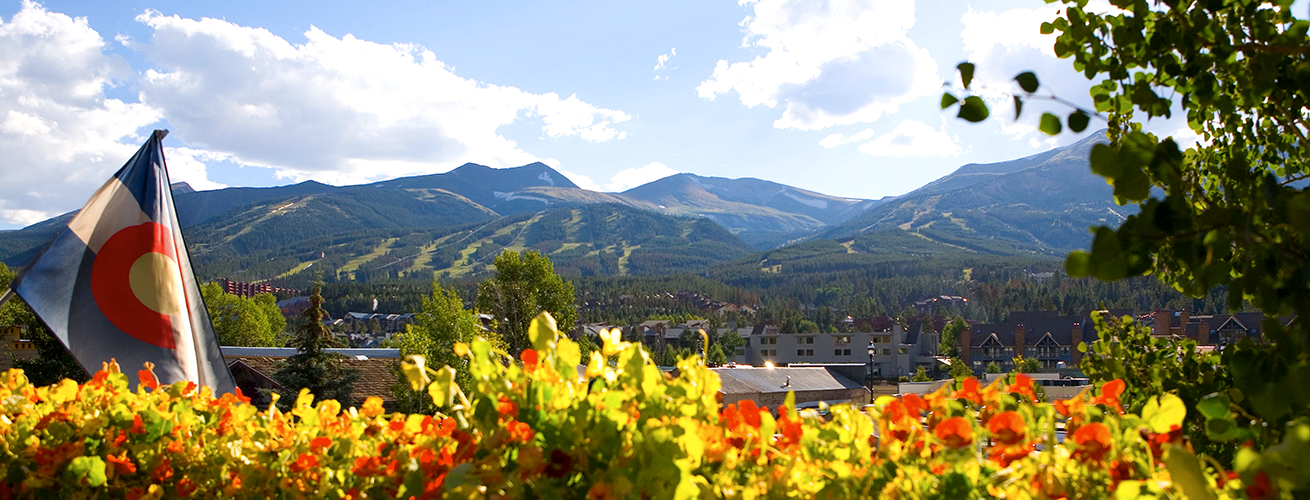 Flowers in Breckenridge
